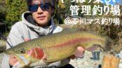 やっぱり楽しい管理釣り場@芥川マス釣り場